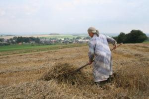 La part du pauvre et son bouillon dans Côte d'Or paysannerie
