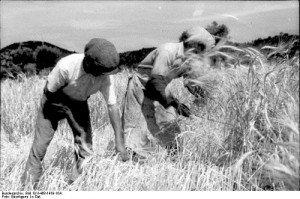 L'évolution des migrations au 19ème siècle dans AUX SIECLES DERNIERS migration-300x199