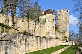 Château de Montbard (21) dans CHATEAUX DE FRANCE parc