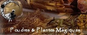 Plantes et pierres magiques de nos ancêtres dans FLORE FRANCAISE images-31