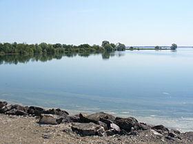 Sur le Lac du Der-Chantecoq dans LACS DE FRANCE lac-du-der