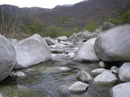 Sur les berges de La Virlange dans COURS d'EAU-RIVIERES de France telechargement-41