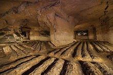 Le Champignon de couche  dans FLORE FRANCAISE 220px-champignonniere_meules