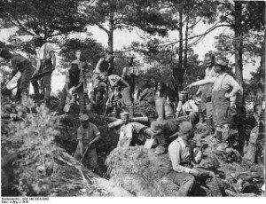 Stellungsbau im Argonnerwald