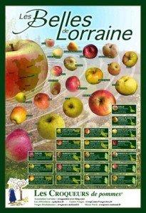 Affiche-Pommes-RVB-42x60-mai-2013