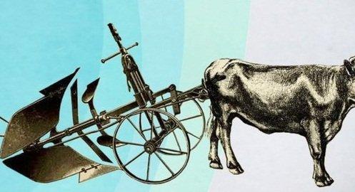 BUGEAUD Par l'pe et la charrue - bertrand-malvauxcom
